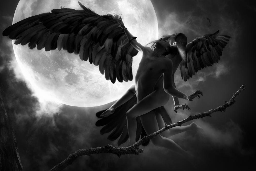 Poster Raven Dance