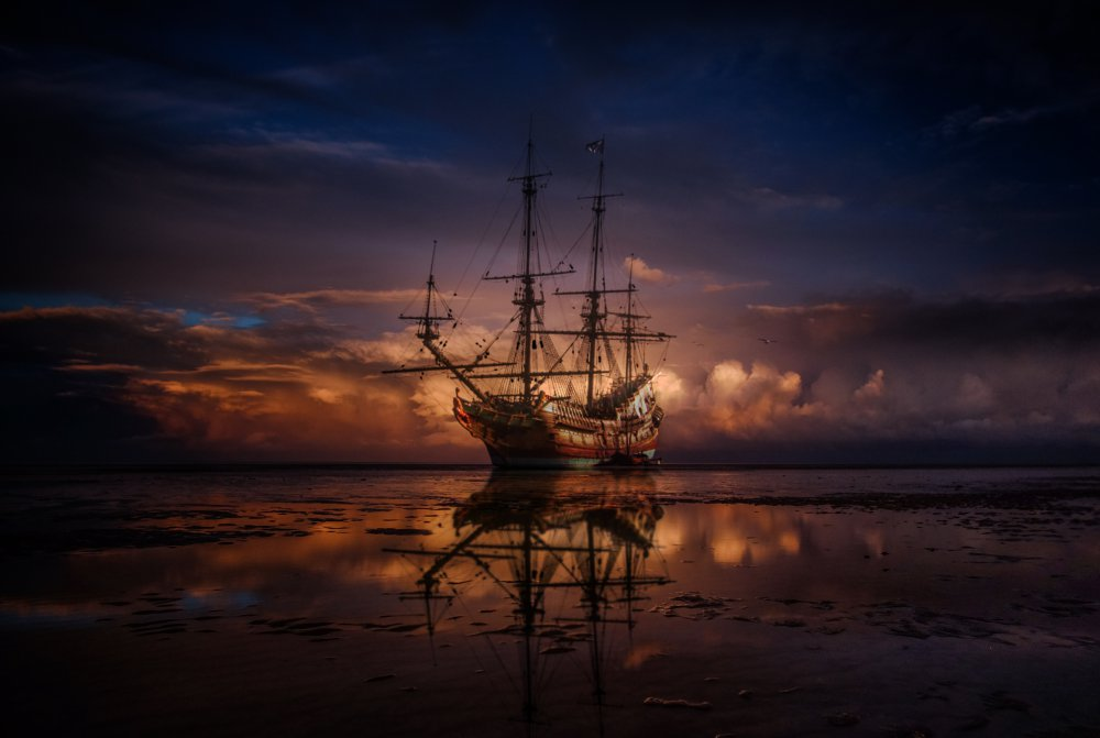 Fotokonst Sparrow