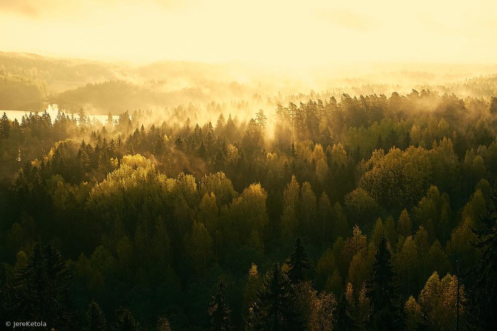Fotokonst Fading mist