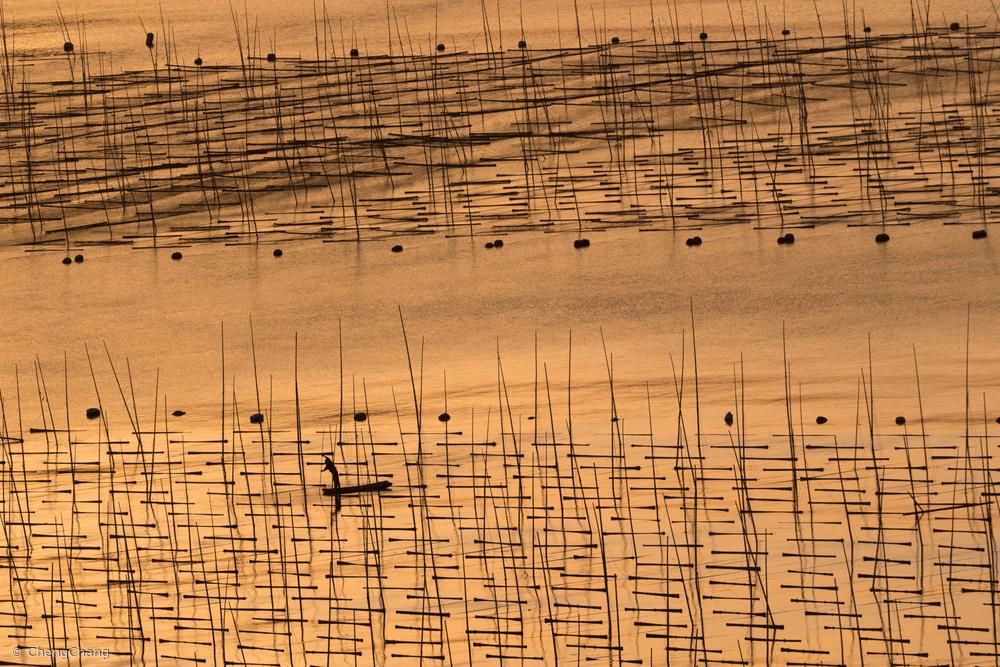 Fotokonst An aquaculture farmer and his farm under sunset