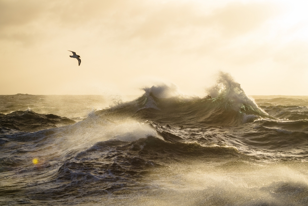 Poster The formidable Drake Passage