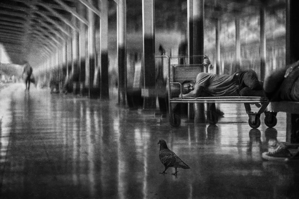 Fotokonst Quiet journey