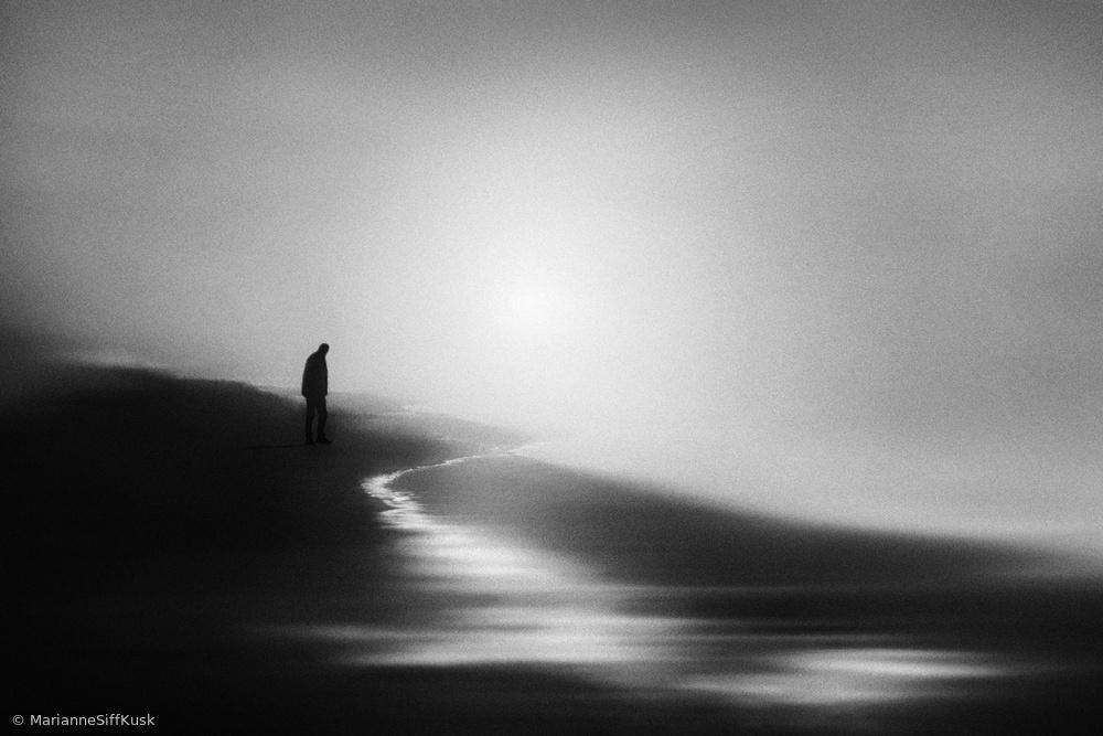 Fotokonst West Coast Silence