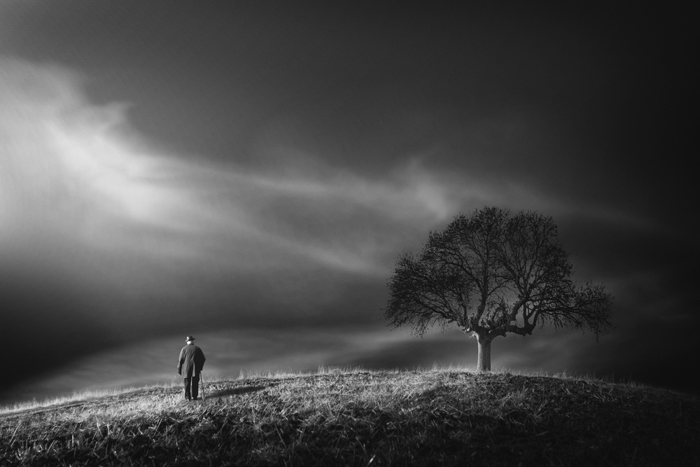 Fotokonst loneliness