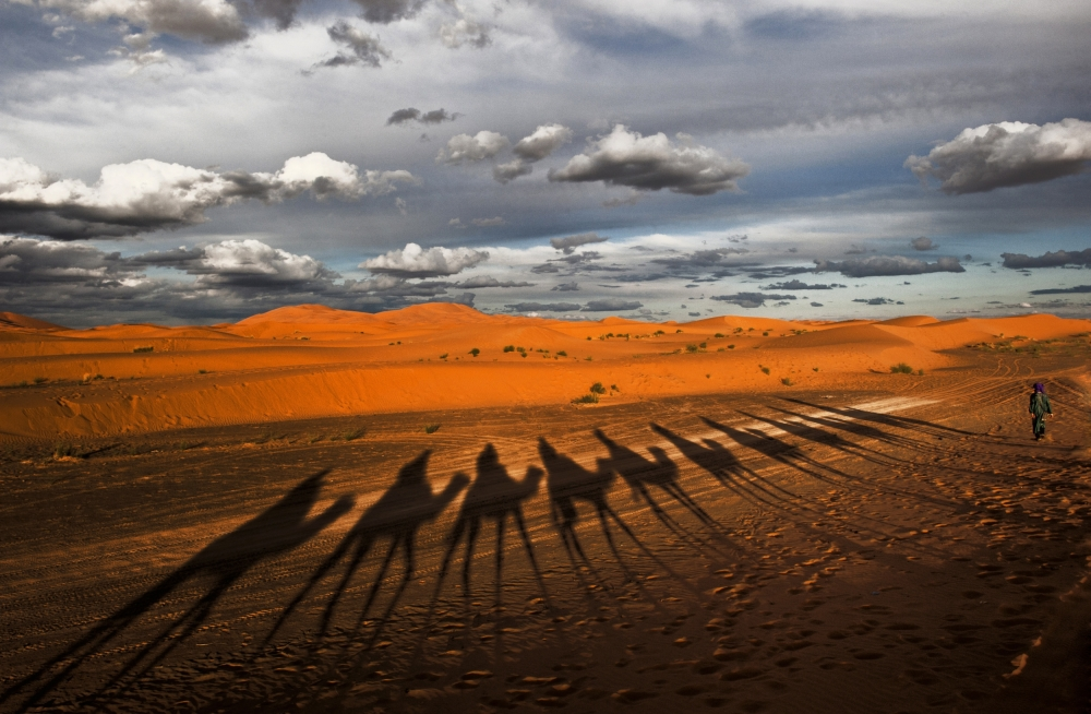 Through the dunes of Merzouga (Morocco).