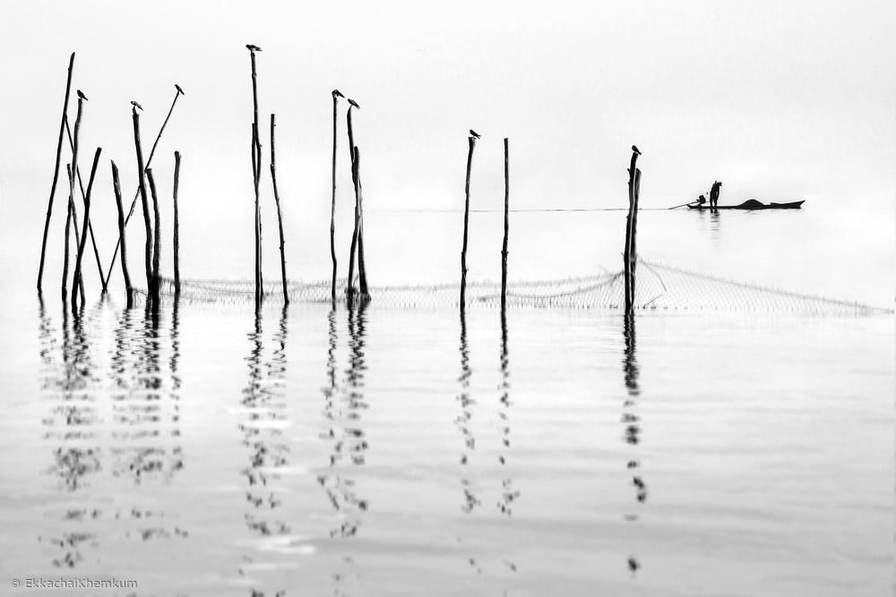 Fotokonst Melody of the sea