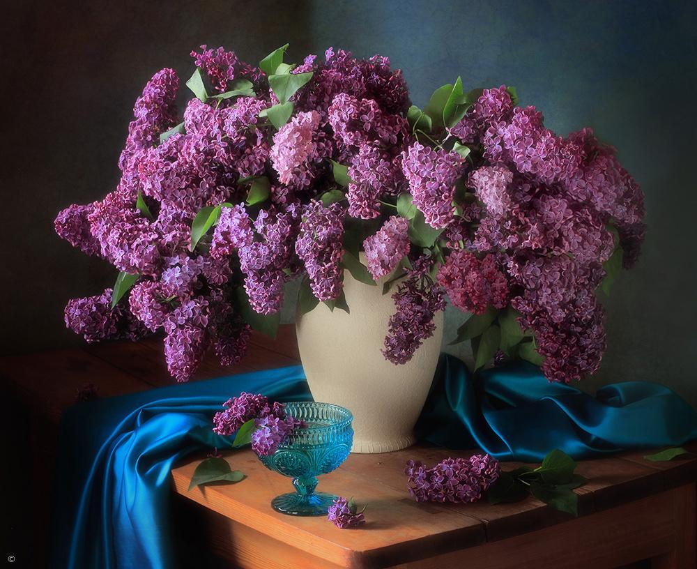 Fotokonst Still life with fragrant lilac