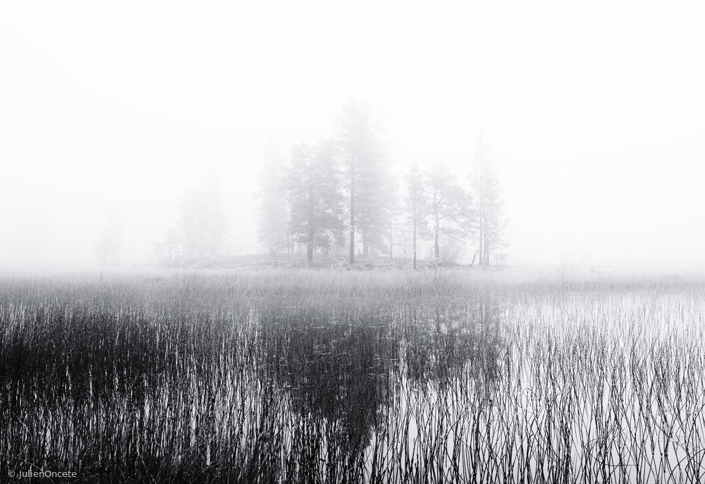 Fotokonst Deep bog