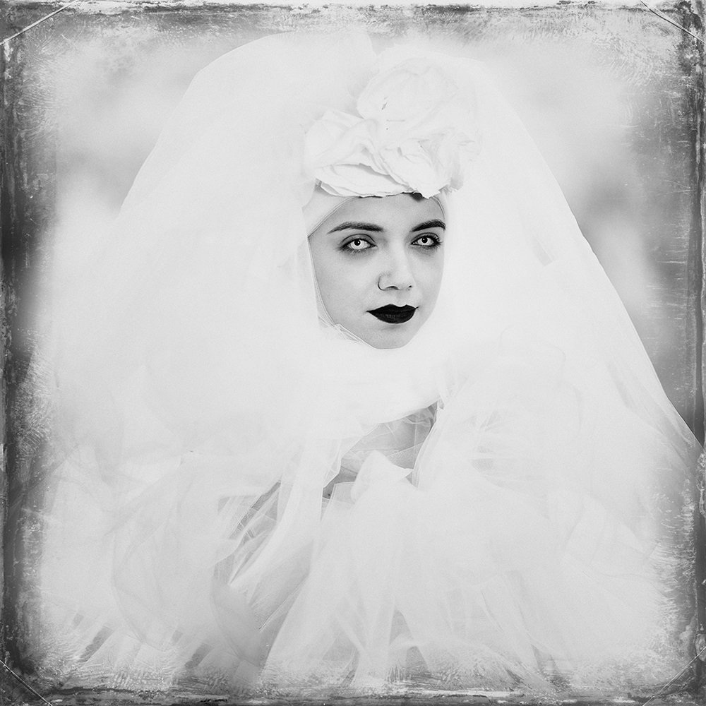 Fotokonst White eyes