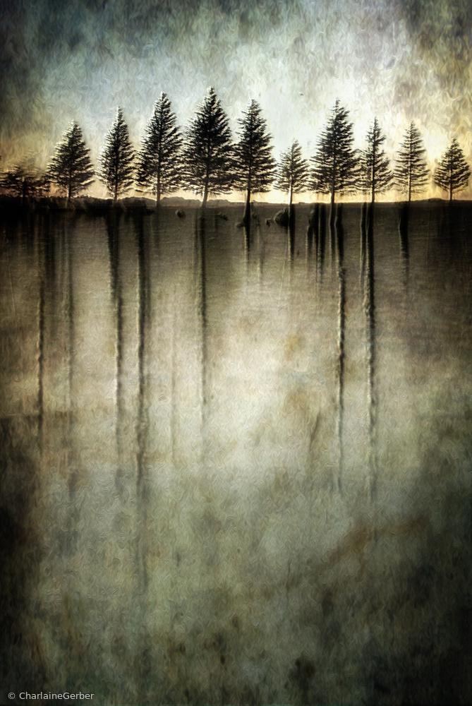 Fotokonst Dark water stands over me