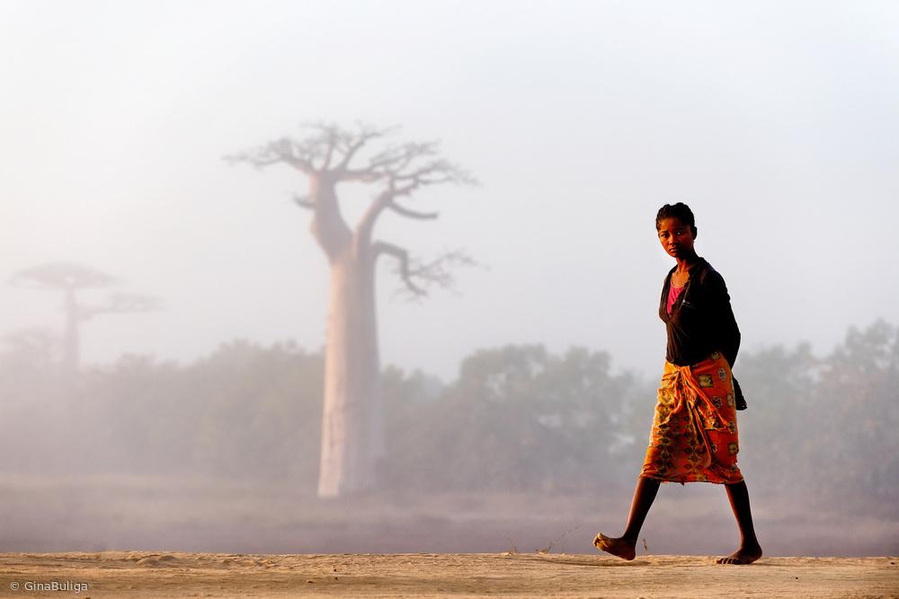 Fotokonst Our way to Madagascar 2016