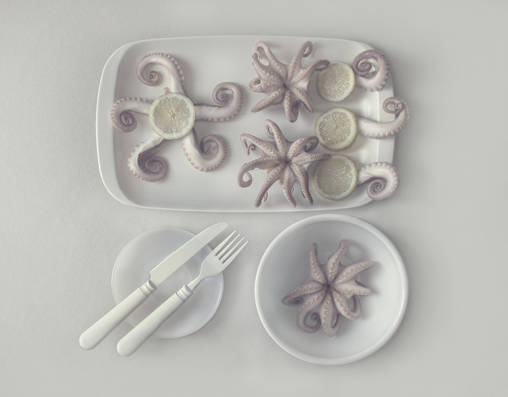 Fotokonst Оctopus...2