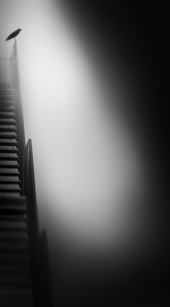 Fotokonst stairway to heaven