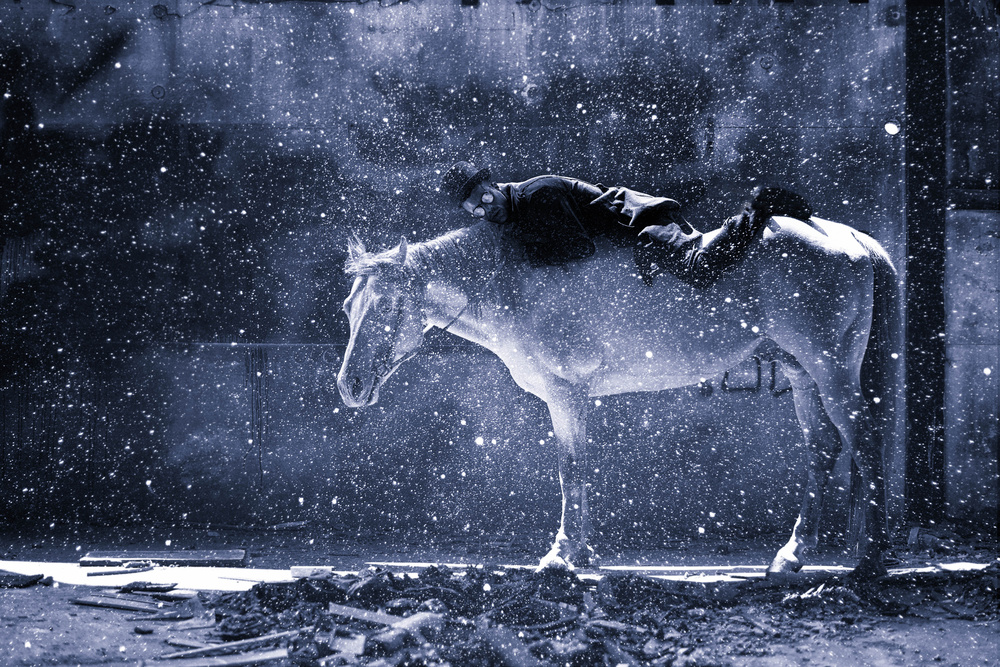 Fotokonst Rider