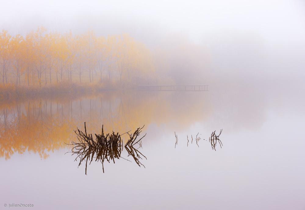 Fotokonst The silence of autumn