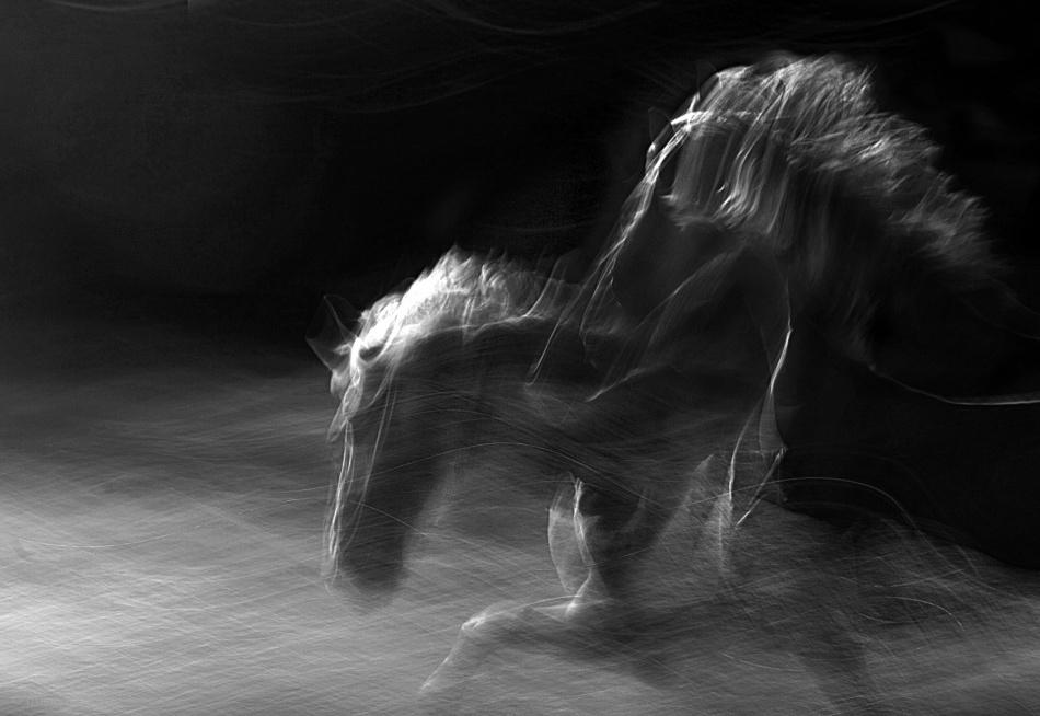 Fotokonst Mystification