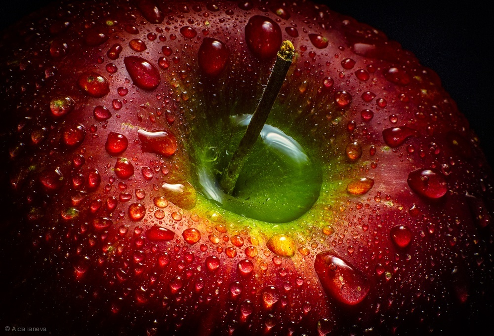 Fotokonst Red Apple
