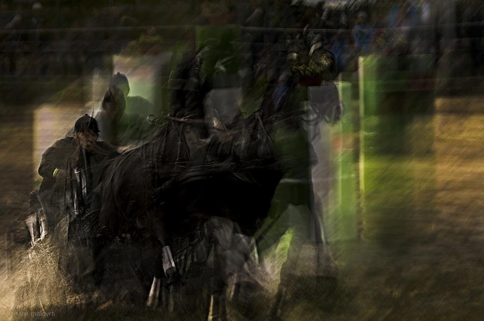 Fotokonst Horse pair marathon