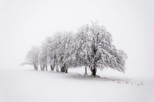 white moments by Heiko Gerlicher