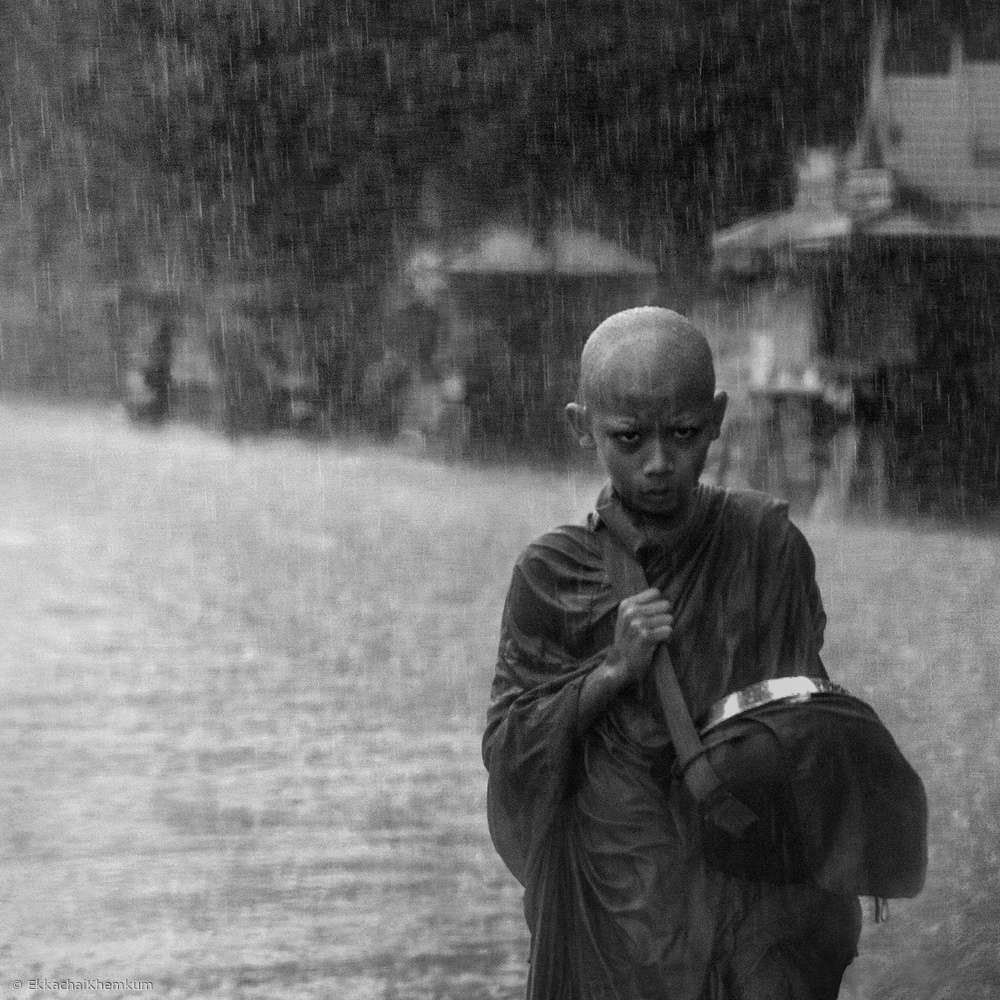 Fotokonst In the morning rain