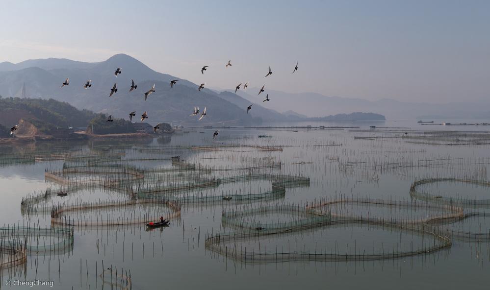 Fotokonst An aquaculture farm at Fuding