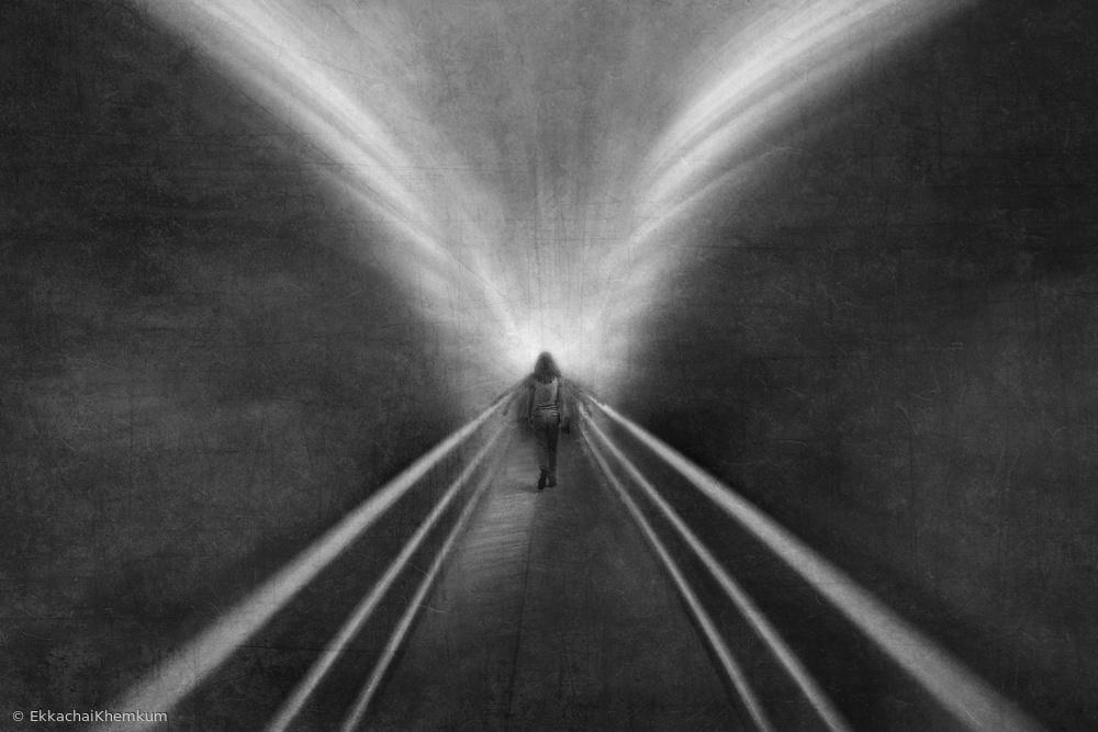 Fotokonst Into the wing of light