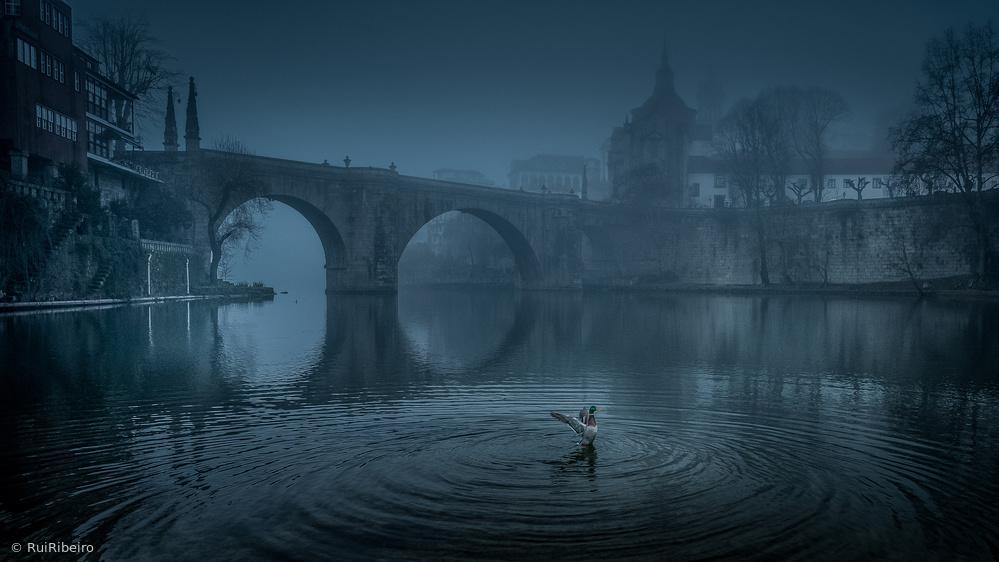 Fotokonst Amarante