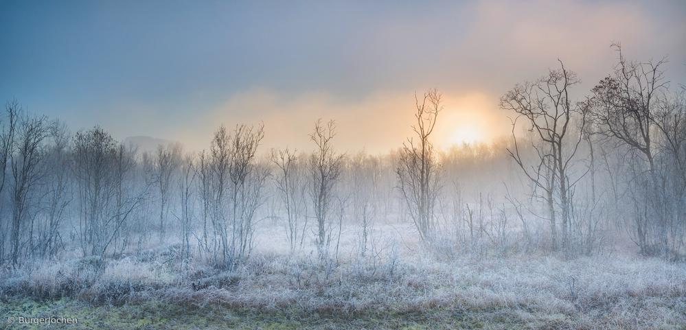 Fotokonst  a touch of winter