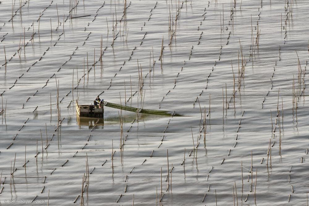 Fotokonst fisherman