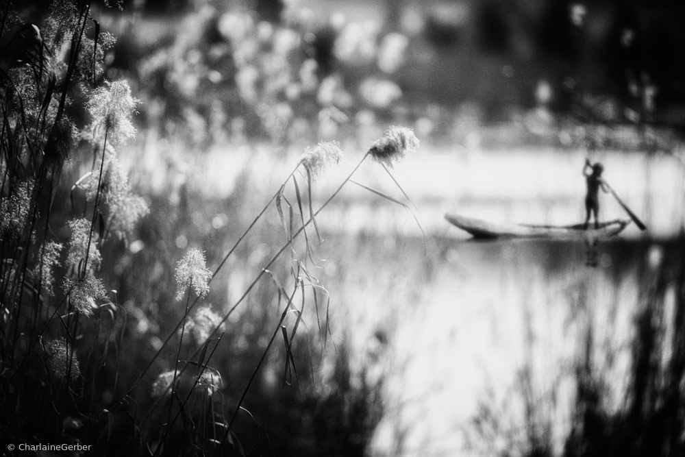 Fotokonst Trying to steer my way...