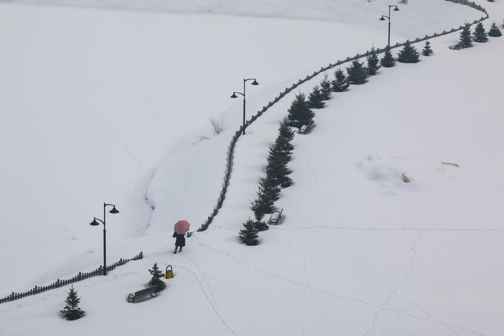 Fotokonst Snow