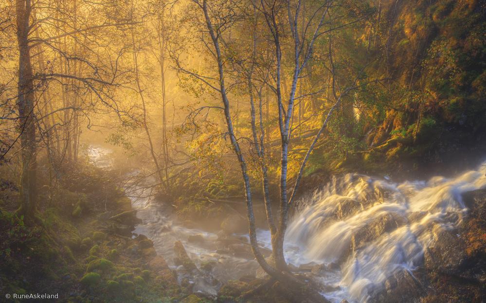 Fotokonst First light