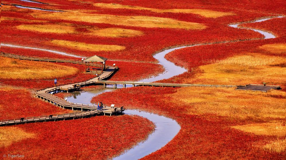 Fotokonst salt pond