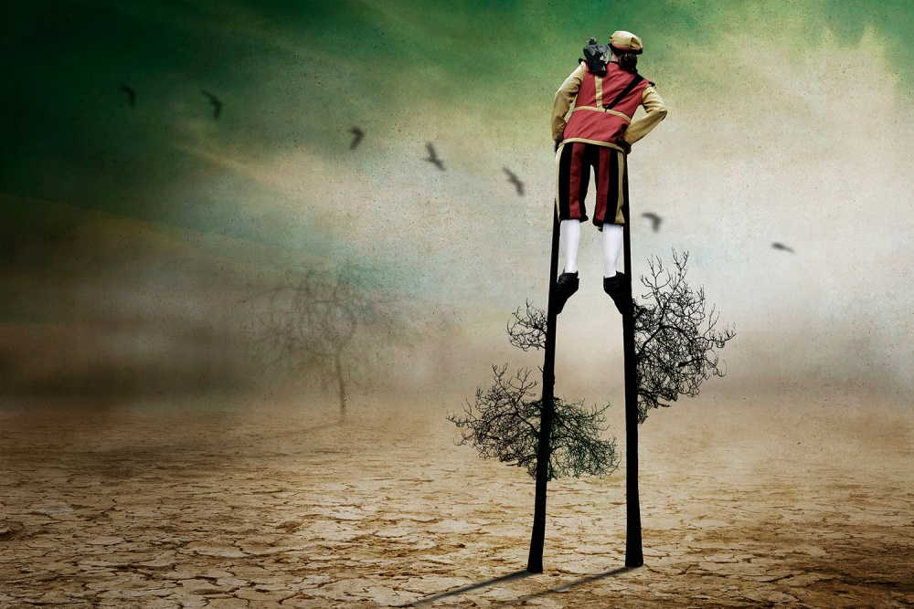 Poster Tree walker.