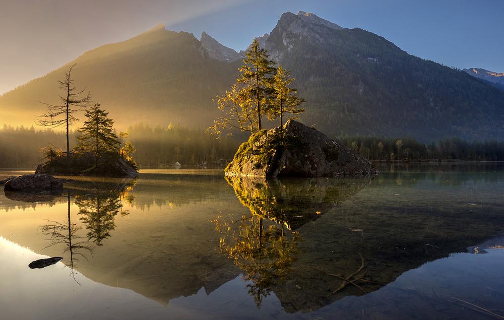 Fotokonst Golden Morning