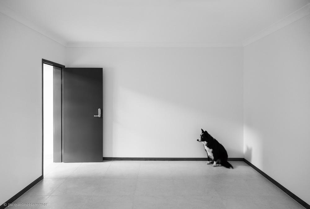 Fotokonst Waiting in the Corner