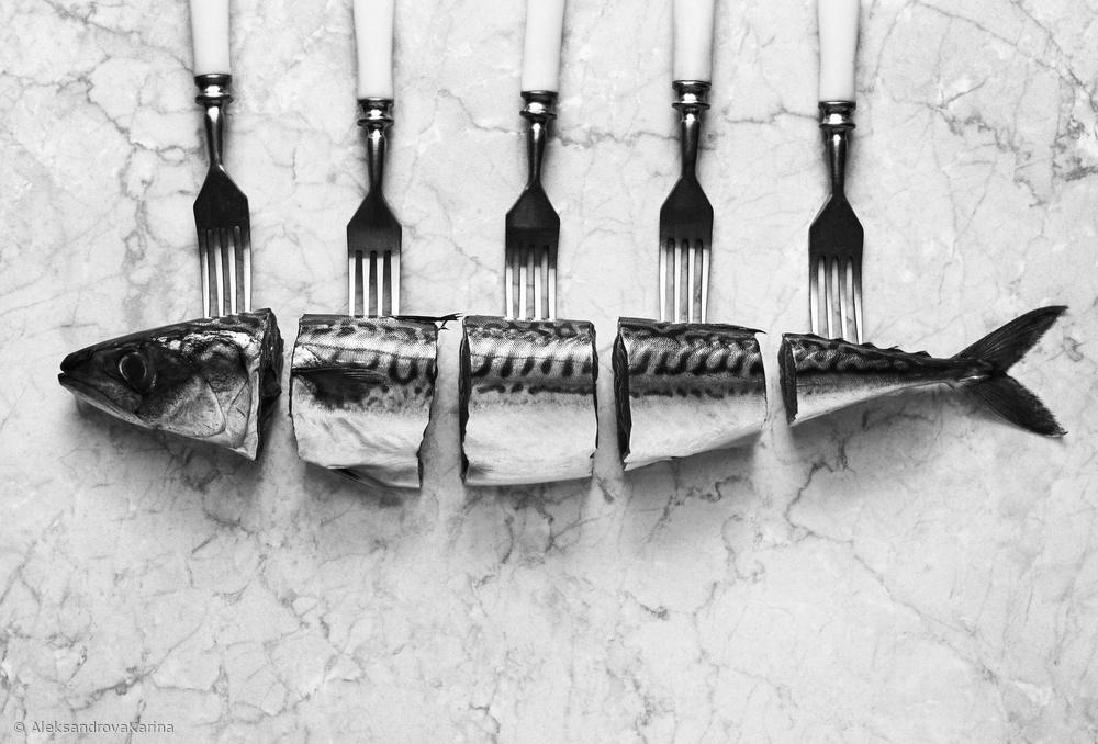 Fotokonst Mackerel&Forks