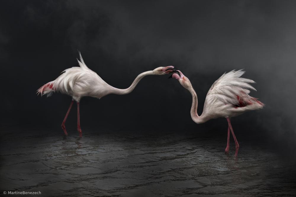 Fotokonst Pink strategy