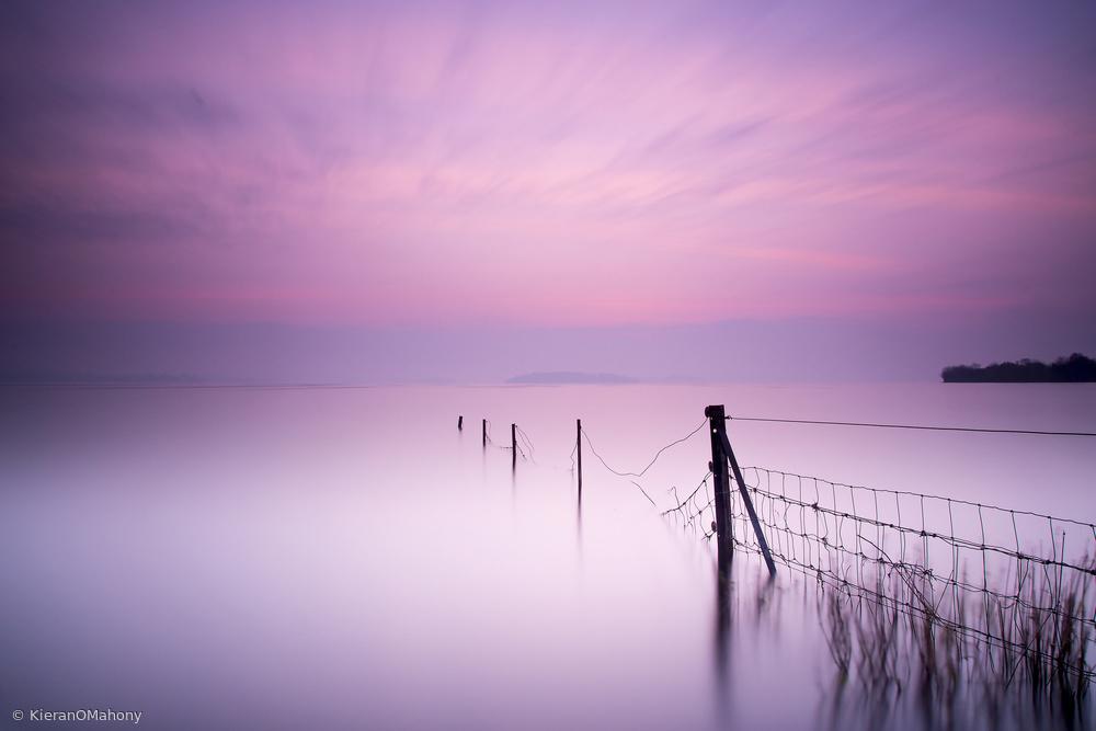 Fotokonst Milky pink