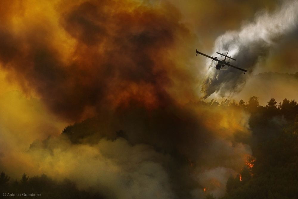 Fotokonst Fire in National Park of Cilento (SA) - Italy