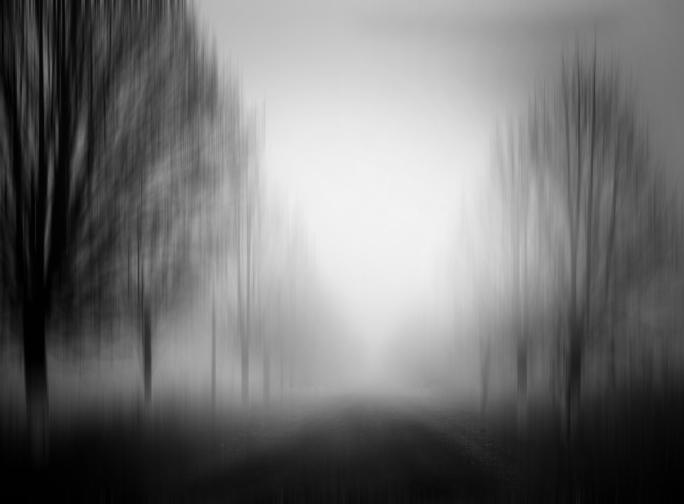 Fotokonst silence of lonelyness