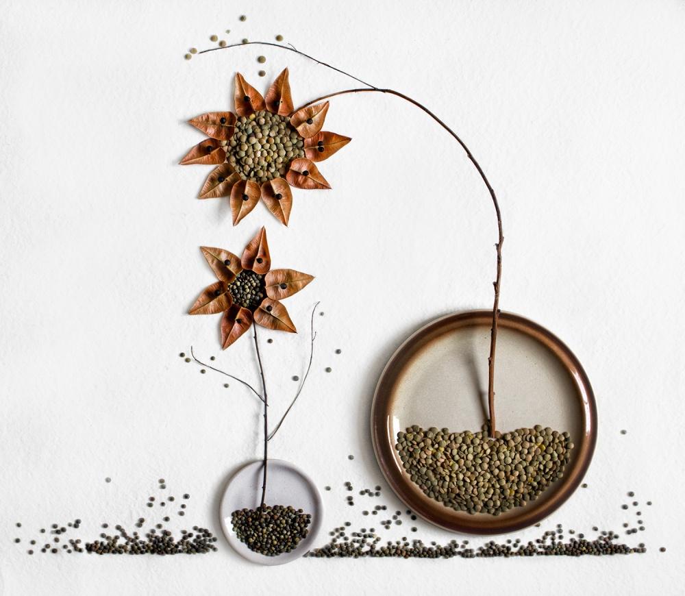 Fotokonst Herbarium...2