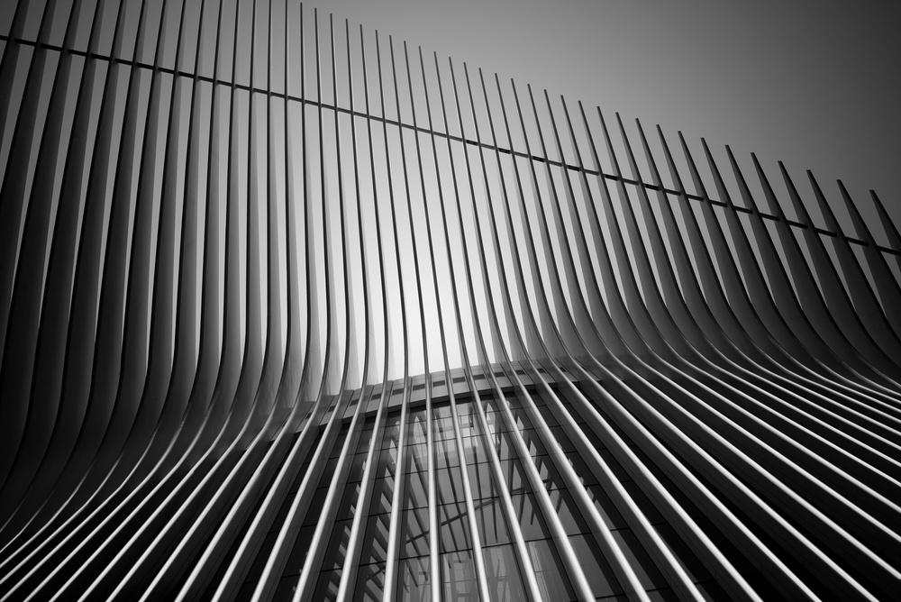 Fotokonst Calatravas lines