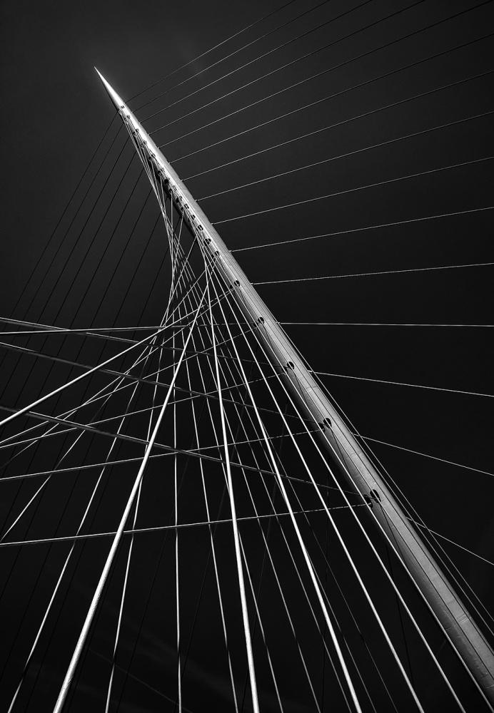 Poster Calatrava's citer music II