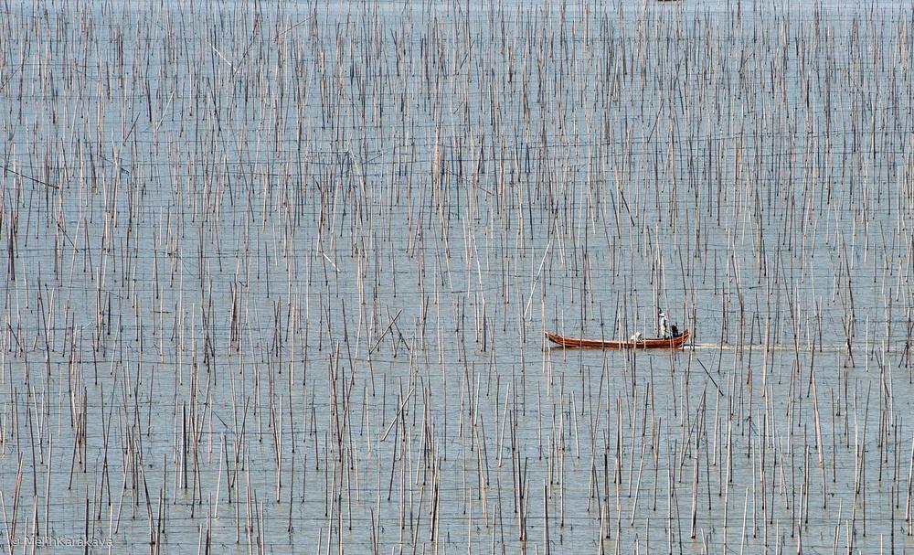 Fotokonst Fishermen