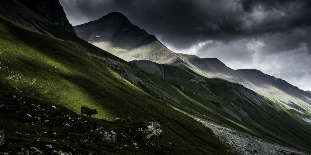 Poster Albula Pass, Switzerland