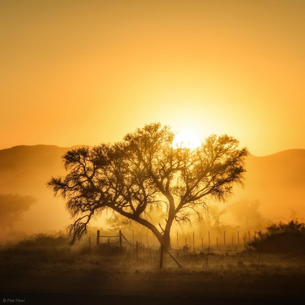 Fotokonst Golden Sunrise