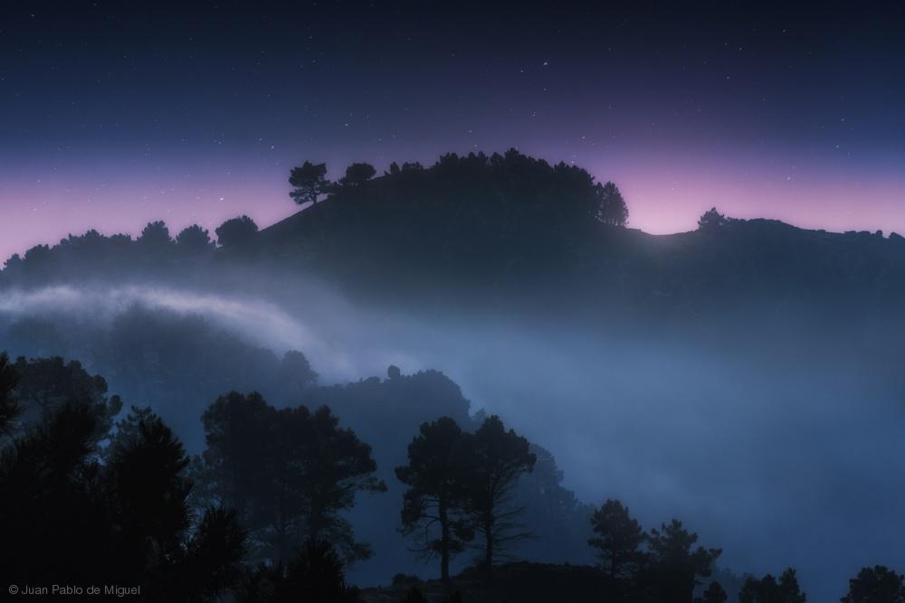 Poster Foggy Sunrise.