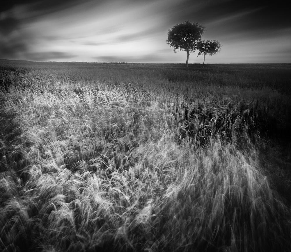 Fotokonst The Maelstrom