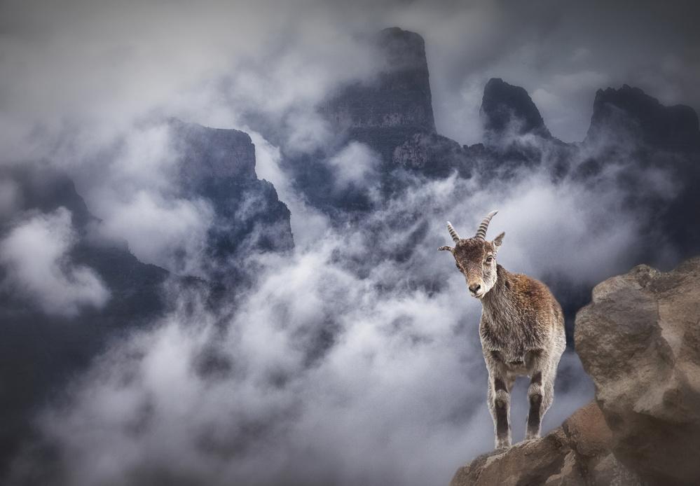 Fotokonst Sesmien mountains